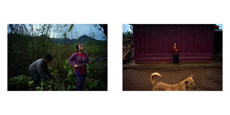 Laos_000_dog_duo