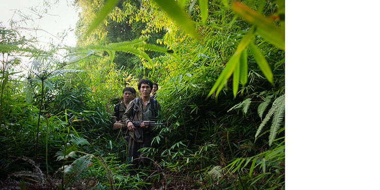 Laos_000_jungle